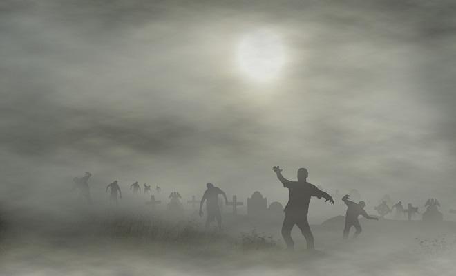 Membongkar Rahasia Saya Mendapatkan Ribuan Blog Zombie Gratis
