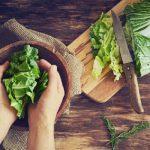 Peluang Usaha Sayuran Organik Sistem Hidroponik di Lahan Sempit